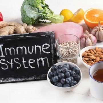 أفضل 10 أطعمة لزيادة المناعة