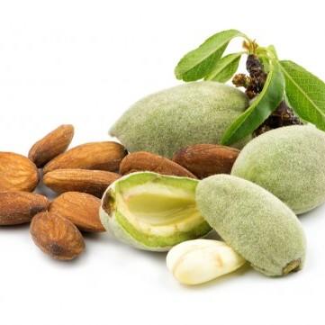 فوائد خارقة لتناول اللوز الأخضر