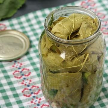 طريقة حفظ وتخزين ورق العنب بالبرطمان