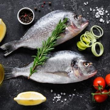 أفضل أنواع السمك