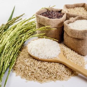 ما هي البدائل الصحية للأرز الأبيض؟