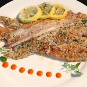 سمك دوفر المحمر